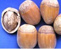 达维(84-254)